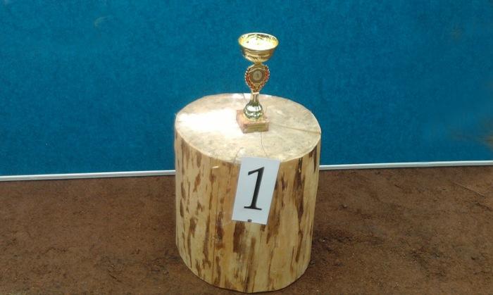 Fotografie ke článku: Softbalisté titul neobhájili, pohár putuje na Masarykovu školu